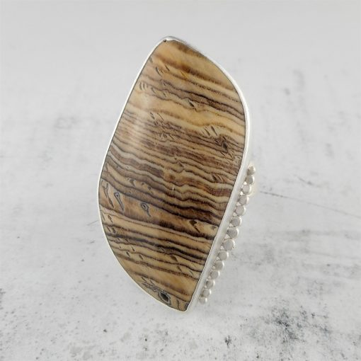 Fossilised Wood and Silver Ring