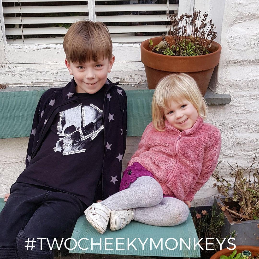 My two cheeky monkey helpers